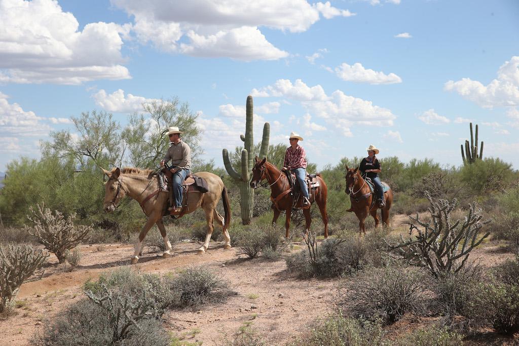 cowboy-college
