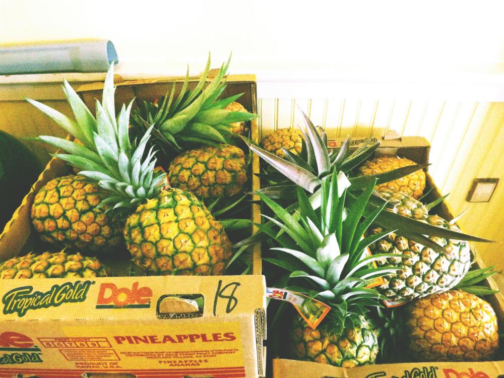 pineapple-season