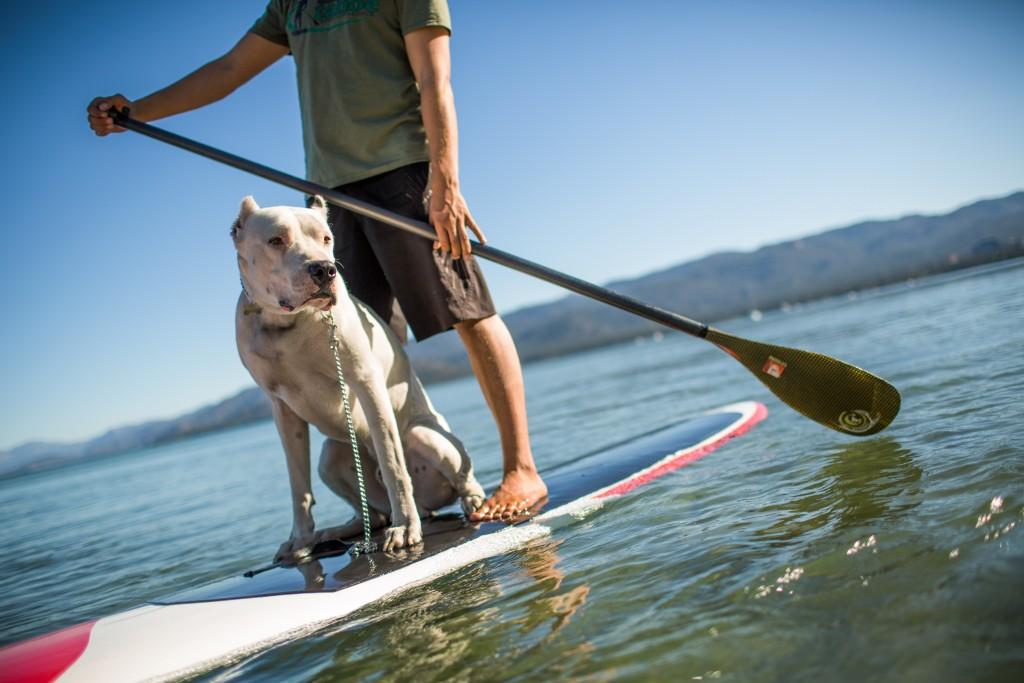 Standup Paddleboarding on Lake Tahoe-4