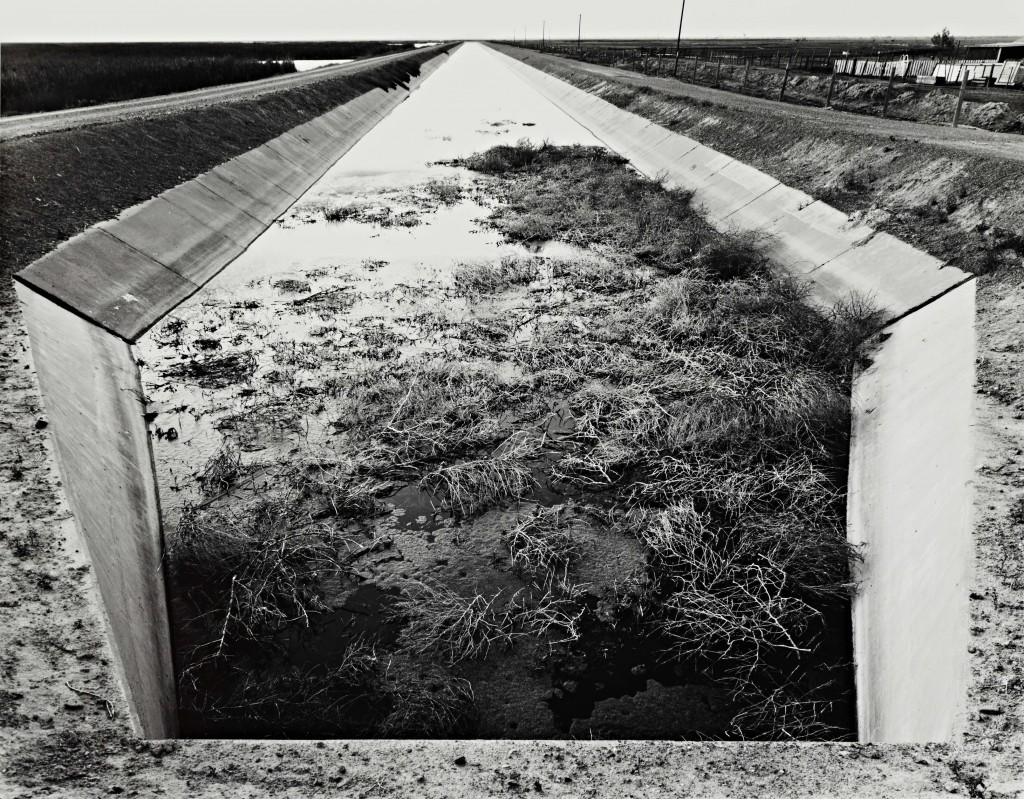 Robert Dawson (U.S.A., b. 1950), San Luis Drain, Kesterson National Wildlife Refuge, California, 1985, from the 1987 portfolio Pangaea. Gelatin silver print. Cantor Arts Center collection, Gift of the artist, 2000.259.5