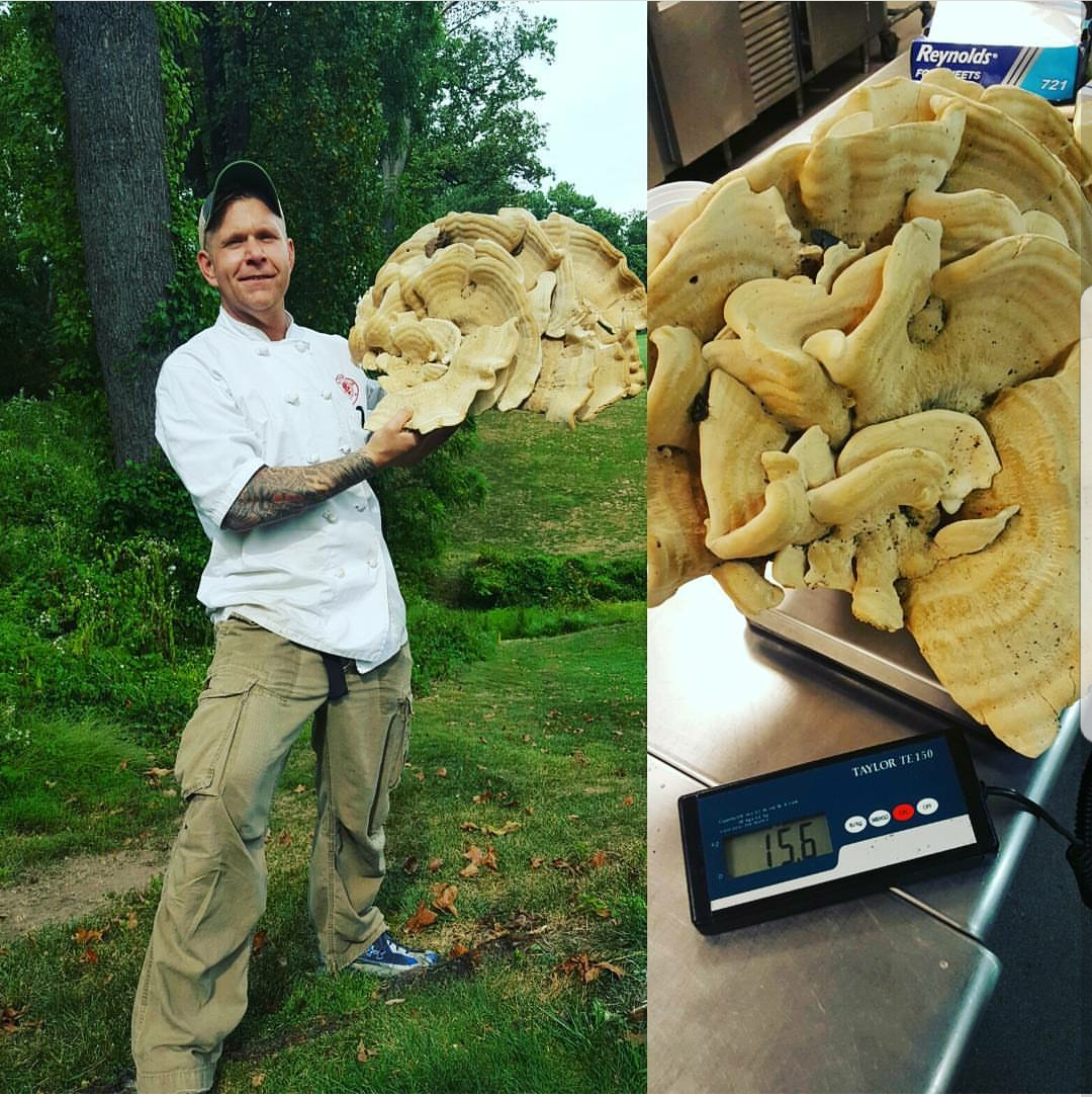 08-chef-mushroomwithheft123_1-2