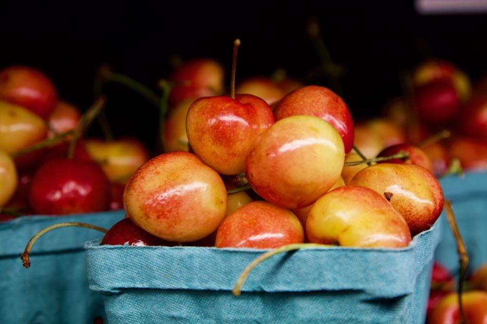 californias-willy-wonka-of-heirloom-fruit