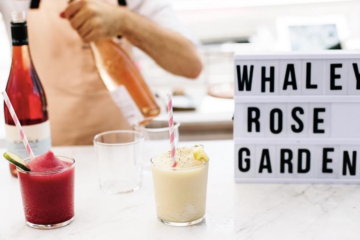 a-really-fun-rose-garden