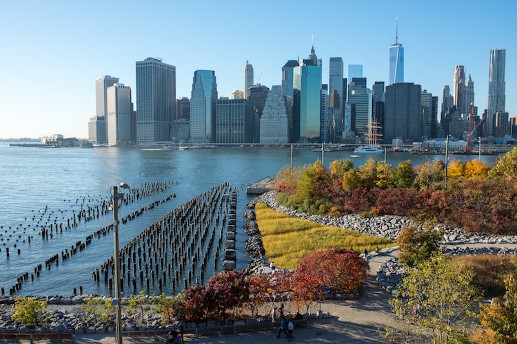 coming-soon-to-new-york-autumn