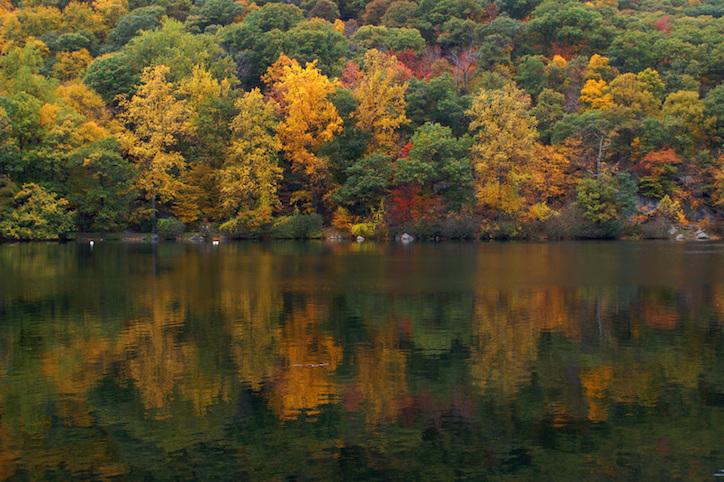 cruising-for-autumns-best-colors