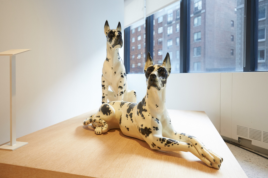 the-best-place-to-see-canine-art